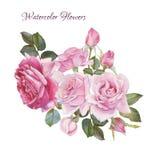 Scheda floreale Mazzo delle rose dell'acquerello Fotografia Stock