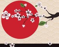 Scheda giapponese con il fiore di ciliegia illustrazione di stock