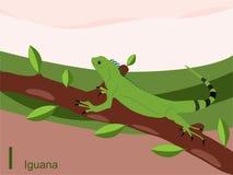 Scheda istantanea di alfabeto animale, I per l'iguana Fotografia Stock