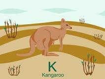 Scheda istantanea di alfabeto animale, K per il canguro Immagine Stock