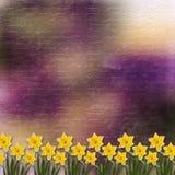 Scheda per l'invito con il mazzo di fiore Immagini Stock Libere da Diritti