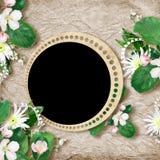 Scheda per la festa con i fiori Fotografia Stock