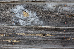 Schede di Vintaged Barnwood con vernice Immagini Stock