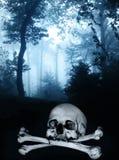 Schedel en beenderen in het donkere mistige bos Stock Foto