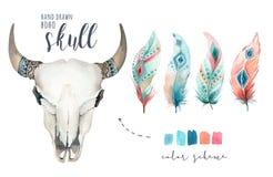Schedel en veer van de waterverf de de Boheemse koe Westelijke zoogdieren Van de bohodecoratie van Boho hipster herten de drukgew royalty-vrije illustratie