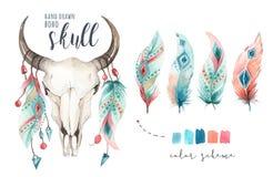 Schedel en veer van de waterverf de de Boheemse koe Westelijke zoogdieren Van de bohodecoratie van Boho hipster herten de drukgew stock illustratie