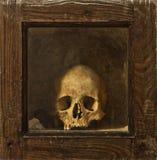 Schedel in houten relikwieënschrijn Royalty-vrije Stock Afbeeldingen