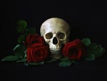 Schedel met rode rozen Stock Afbeelding