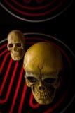 schedel op samenvatting Royalty-vrije Stock Afbeeldingen