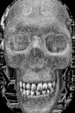Schedelmodel royalty-vrije stock afbeeldingen