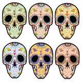schedels Royalty-vrije Stock Foto