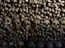 schedels Stock Afbeelding
