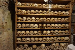 schedels Stock Foto