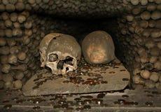 Schedels en muntstukken in ossuarium Stock Afbeelding