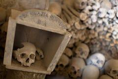 Schedels in Fontanel-begraafplaats stock foto