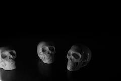 Schedels, Halloween-achtergrond Stock Afbeelding