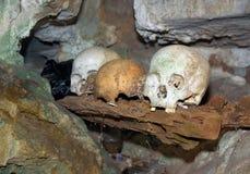 Schedels in hol Londa is begrafenisplaats in Tana Toraja, Zuiden Sulaw royalty-vrije stock afbeeldingen