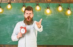 Schedule and regime concept. Teacher in eyeglasses holds alarm clock. Man with beard on shouting face on arguing. Expression. Bearded hipster holds clock stock images