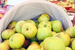 Scheffel grüne Äpfel Stockbild