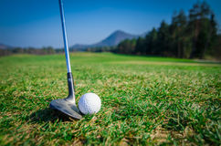 Scheggia della palla da golf sul verde con il club di golf del driver Immagini Stock