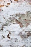 Scheggiato e sbucciando pittura bianca sul vecchio muro di mattoni Immagini Stock