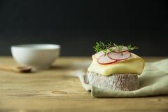 Scheibe brot mit Käse und Rettich Lizenzfreie Stockfotos