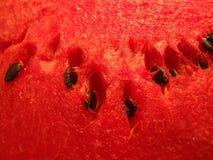 Scheibe der Melone Lizenzfreie Stockbilder
