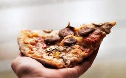 Scheibe der Pizza Stockbilder