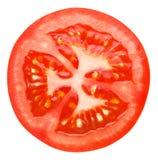 Scheibe der Tomate Lizenzfreies Stockbild
