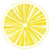 Scheibe der Zitrone Lizenzfreie Stockbilder