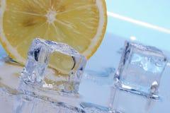 Scheibe der Zitrone- und Eiswürfel Stockfotos