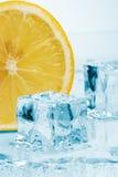 Scheibe der Zitrone- und Eiswürfel Stockbild