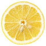 Scheibe der ZitronenZitrusfrucht lokalisiert auf Weiß lizenzfreies stockfoto