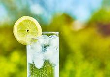 Scheibe des funkelnden Wassers und der Zitrone Lizenzfreie Stockfotos