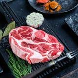 Scheibe des rohen Fleisches mit Gewürzen Lizenzfreie Stockfotos