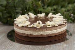 Scheibe des selbst gemachten Schokoladenkuchens lizenzfreies stockbild