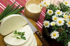 Scheibe des traditionellen slowakischen Schafmilch-Käses Stockfotografie