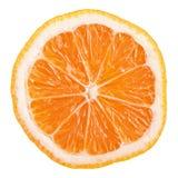 Scheibe von Rangpur (lemandarin) - Zitrusfrucht, hybride Mandarine und Zitrone Lizenzfreies Stockbild