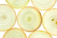 Scheiben der frischen Zwiebel/des Hintergrundes/des rückseitigen beleuchtet Stockbilder