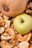 Scheiben der getrockneten Äpfel mit Apfel und Kürbis Lizenzfreie Stockfotos
