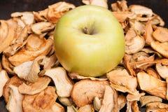 Scheiben der getrockneten Äpfel mit frischem Apfel Lizenzfreies Stockfoto
