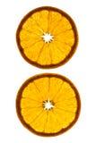 Scheiben der Orange Lizenzfreie Stockfotografie