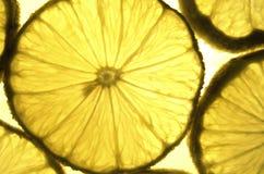 Scheiben der Zitrone Lizenzfreie Stockbilder