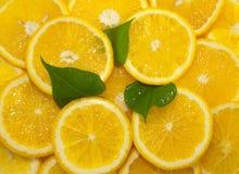 Scheiben der Zitrusfrucht, Hintergrund Lizenzfreie Stockfotografie
