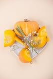 Scheiben des frischen orange Kürbises und der Trockenblumen auf einem Weiß flechten Lizenzfreie Stockbilder