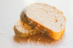 Scheiben des schimmeligen Brotes auf hellem Hintergrund Nahrung nicht passend für Verbrauch stockbild
