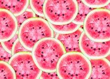 Scheiben des Wassermelonenhintergrundes Stockfoto
