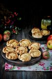 Scheiben von den frischen Äpfeln gebacken im Teig lizenzfreies stockbild