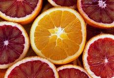 Scheiben von Orangen Lizenzfreie Stockbilder