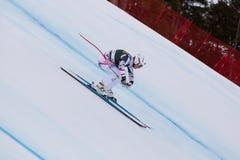 SCHEIBER Florian (AUT). VAL GARDENA - GROEDEN, ITALY 21 December 2013. SCHEIBER Florian (AUT) competing in the Audi FIS Alpine Skiing World Cup MEN'S DOWNHILL on Stock Photography